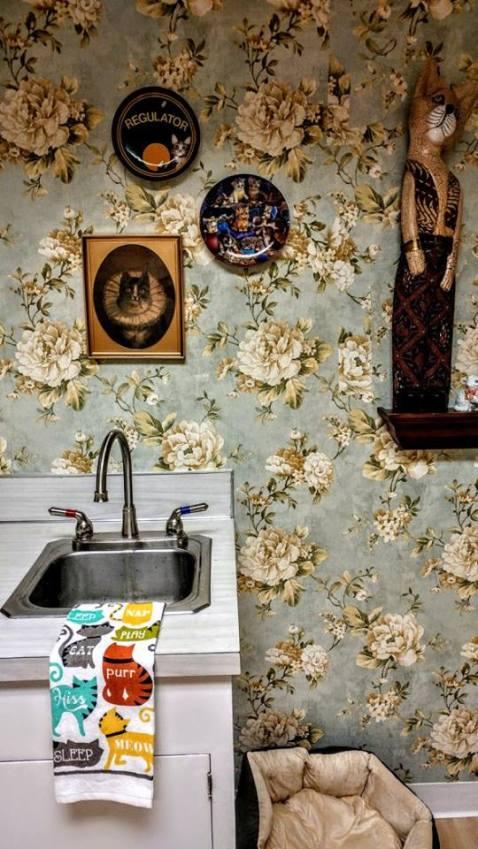 Portland - Mad Genius - Cat's lady - kitchen