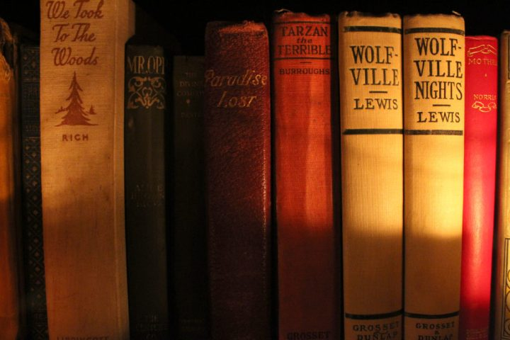 the-storykeeper-books-on-shelf-closeup-1030x687.jpg